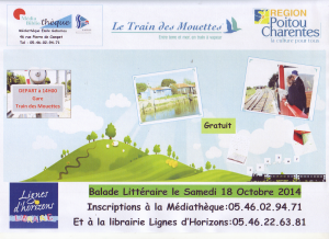 affiche train des mouettes